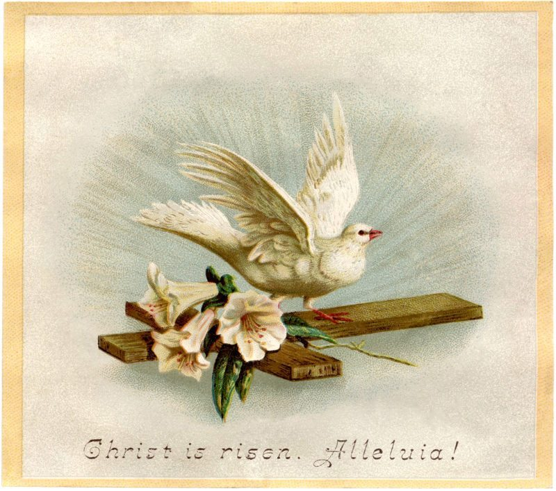 http://quiltjane.com/wp-content/uploads/2017/04/Easter-Dove-Image-Download-GraphicsFairy-800x707.jpg